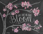 buro blossom