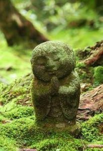 mindfulness, aandachtig leven