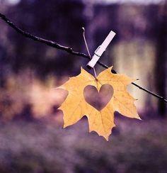 herfstdankbaarheid