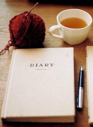 Daily diary writing