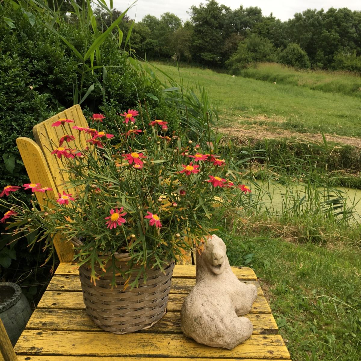 In mijn tuin vind ik geluk.